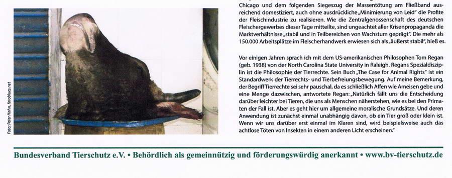 Der Tierschutz Bundesverband Tierschutz Seite 4 konv