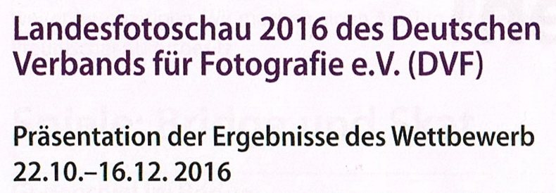 LaFo2016 Ausstellungs AnkündigungVHS5