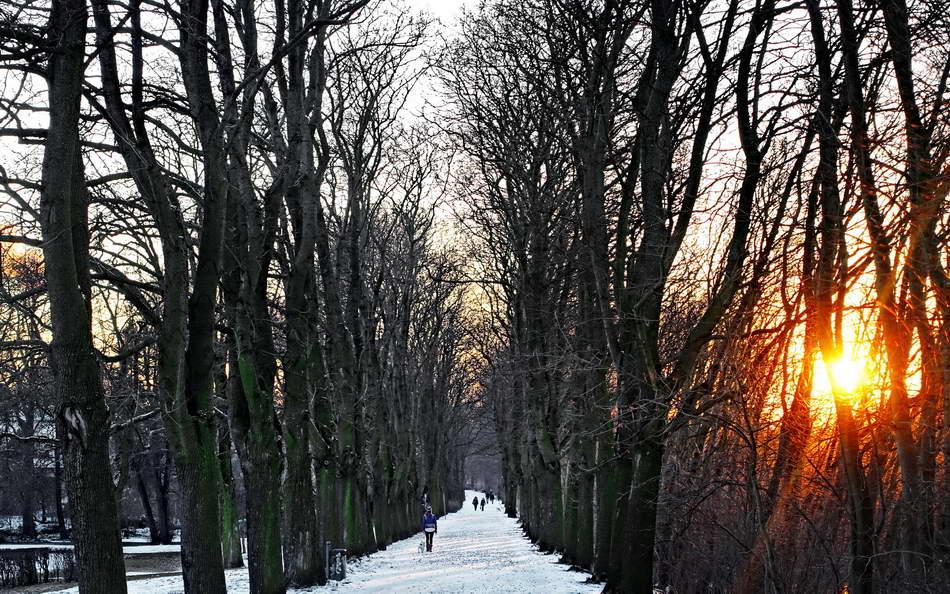Peter Hahn fotoblues Impressionen Bäkepark Lichterfelde Berlin Lichterfelde Edmund Spranger Promenade Winterliche Impression 2 konv1