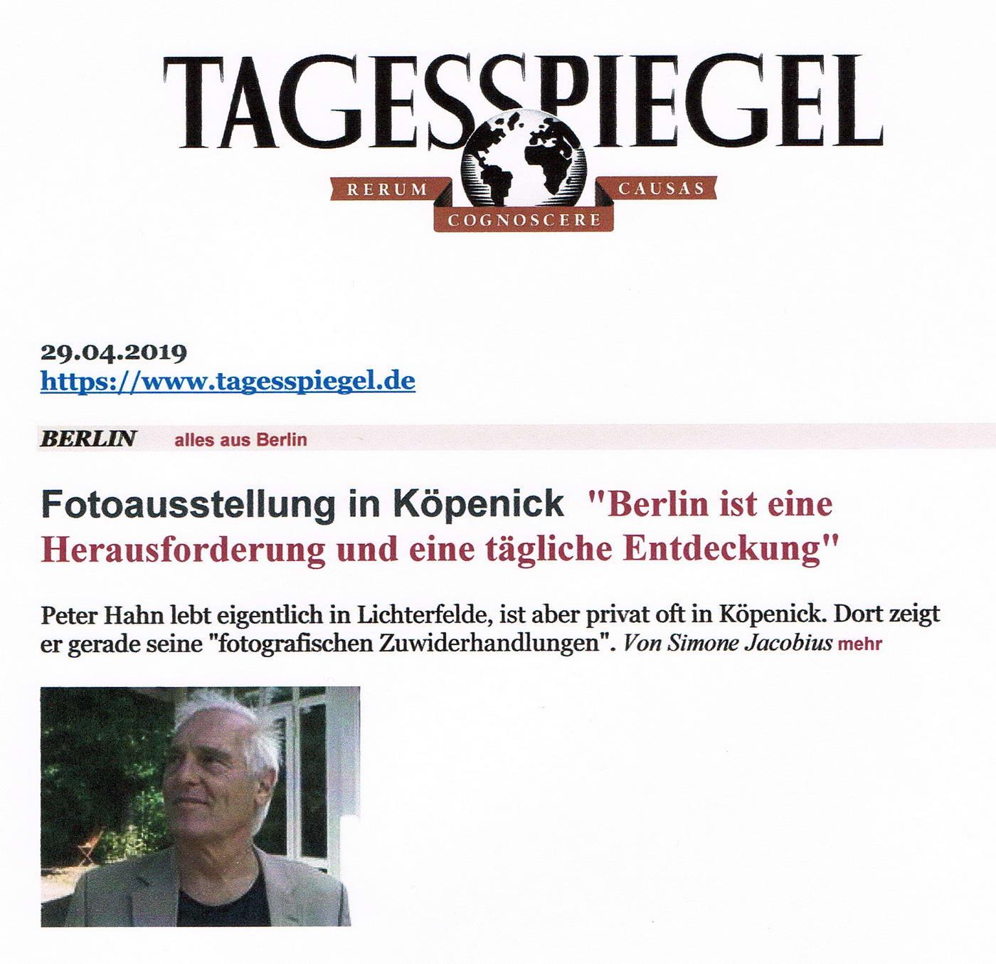 Tagesspiegel Schmetterlingshorst 01 konv
