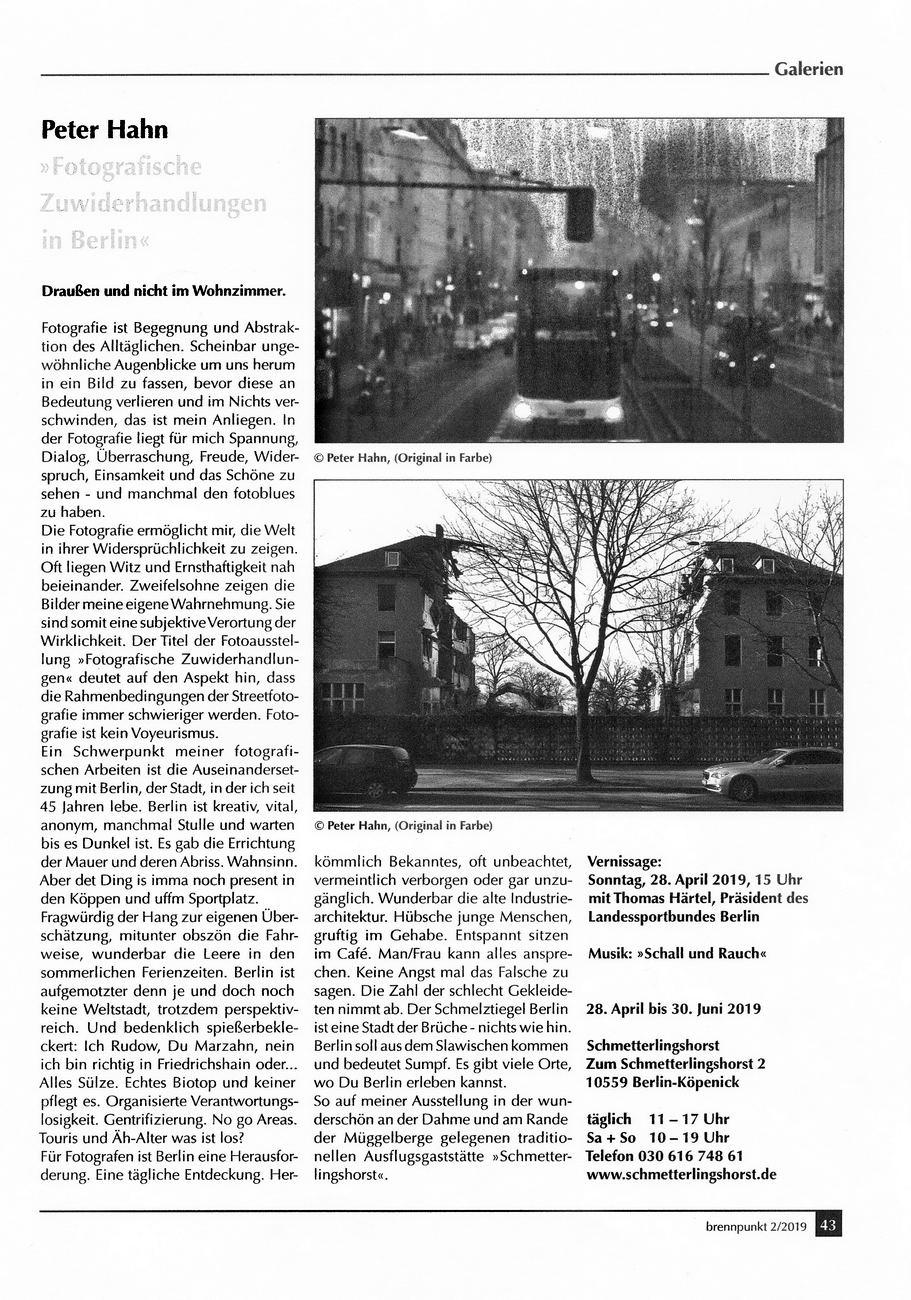 brennpunkt Schmetterlingshorst 01 konv