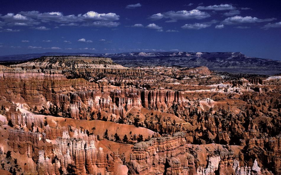 BRYCE CANYON - UTAH-USA - PANORAMA