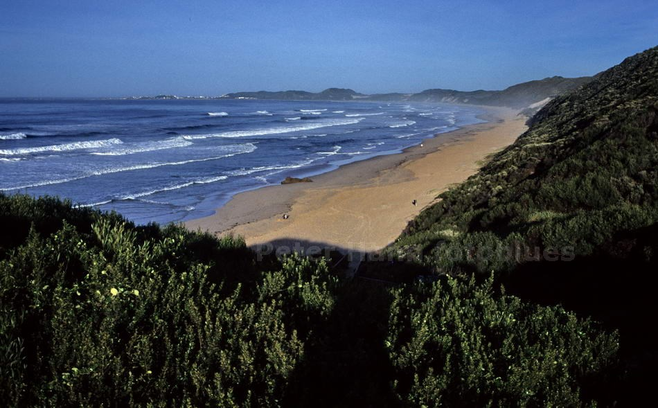 BRENTON-ON-SEA - KNYSNA-SOUTH AFRICA - STRAND NACH BUFFALSBAI