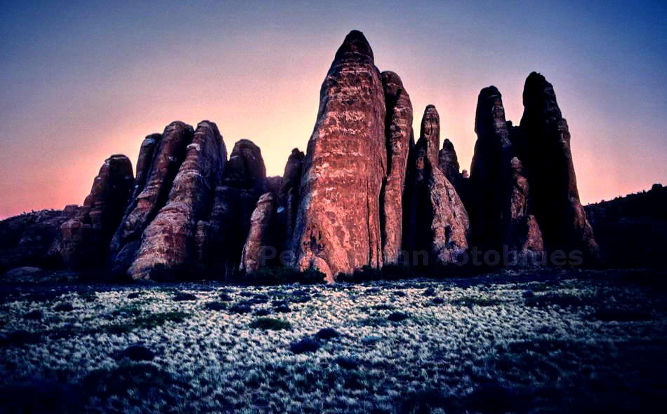 ARCHES NATIONAL PARK - UTAH-USA - FELSEN