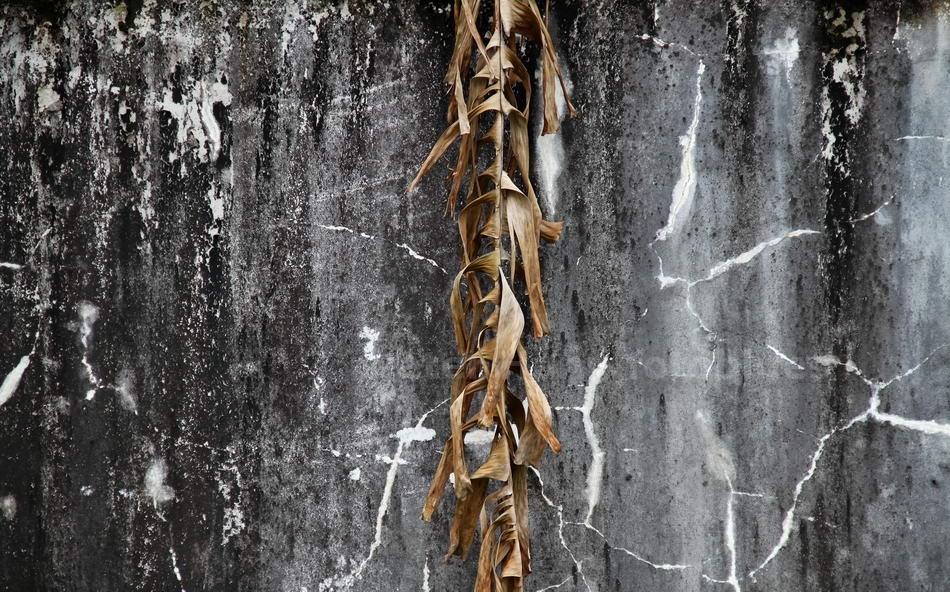 FARBEINDRUCH - SIHANOUKVILLE - KAMBODSCHA-CAMBODIA