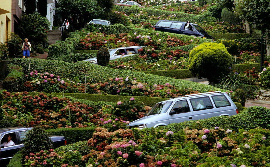 SAN FRANCISCO - CALIFORNIA-USA - LOMBARD STREET