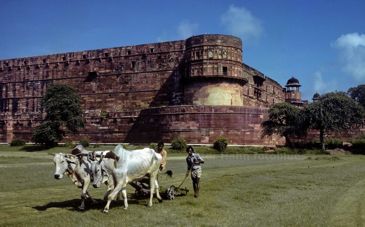 AGRA - UTTAR PRADESH - INDIEN-INDIA - FORT